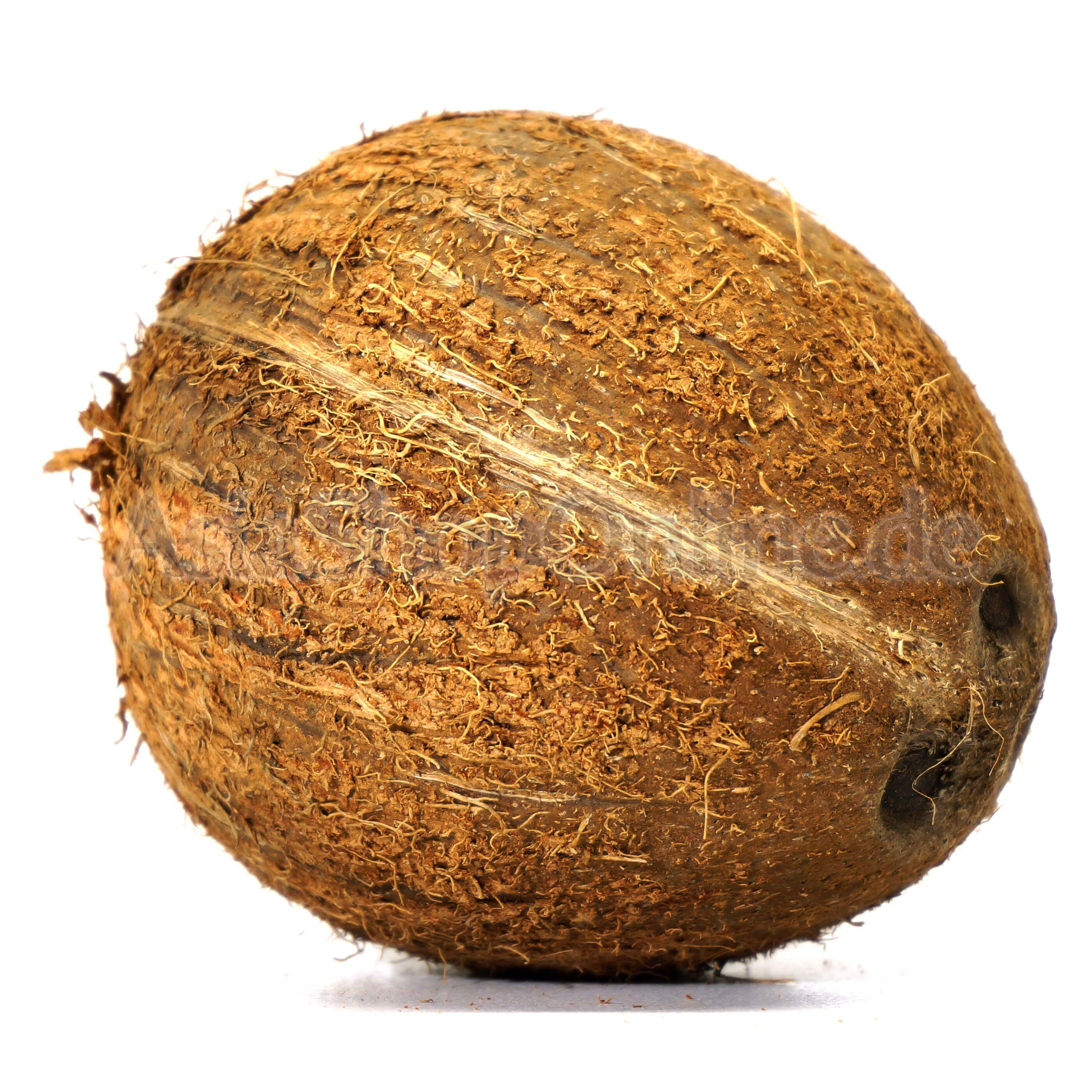 Ts Kokosnuss